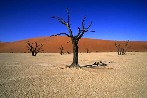 Urlaub Namibia
